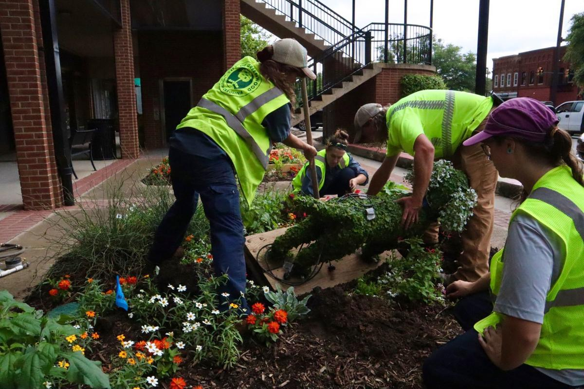 City of Greenwood horticulture staff put topiaries in place