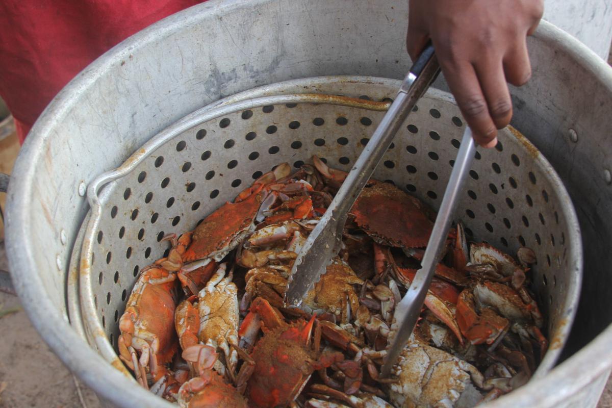 Crab 02.JPG
