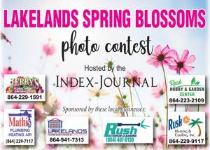 Lakelands Spring Blossoms Winners