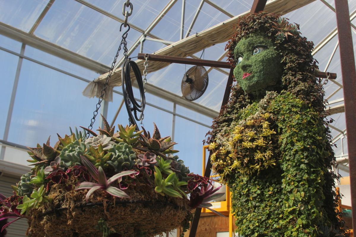 Horticulture 02