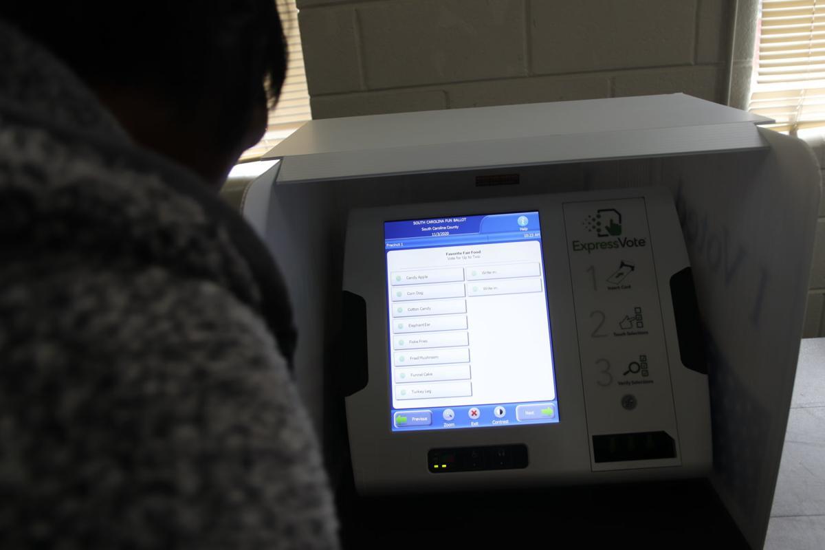 voter 2.JPG