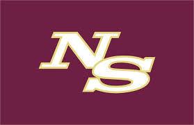 Ninety Six logo (copy)