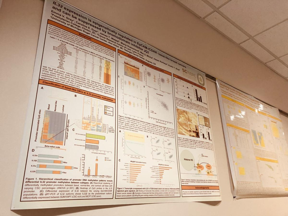 Undergraduate students at PC have presented breast cancer research at conferences