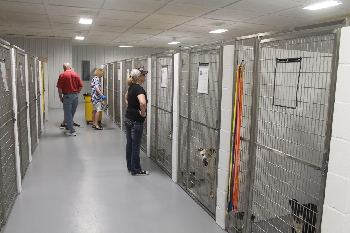 Abbeville shelter kennels