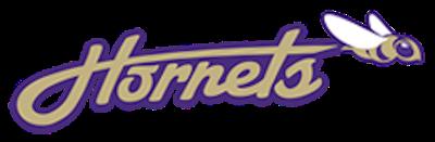 Ware Shoals logo