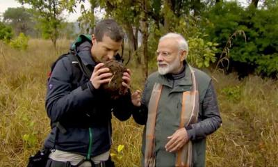 Modi bears all, sniffs dung with Grylls