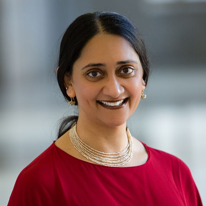 Indian American professor awarded research grant from Harry Frank Guggenheim Foundation