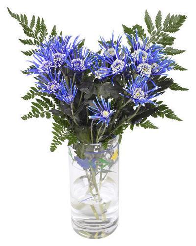 obits floral 08