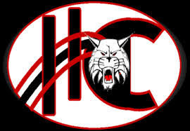 school homer-center sd logo-2.jpg