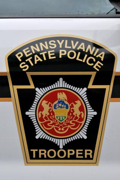 state police emblem car door