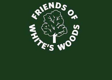friends whites woods.jpg