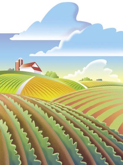 farm scene 05 field