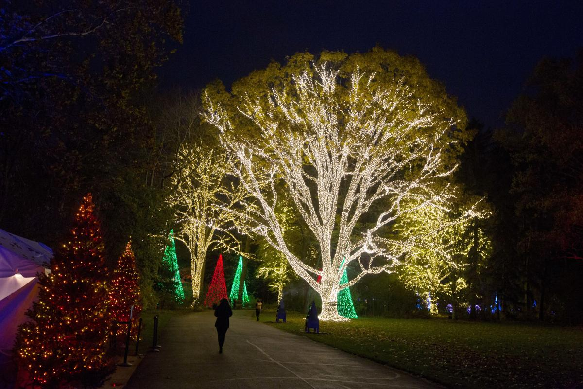 Holiday happenings: Trees, lights, magic on display around U.S. ...
