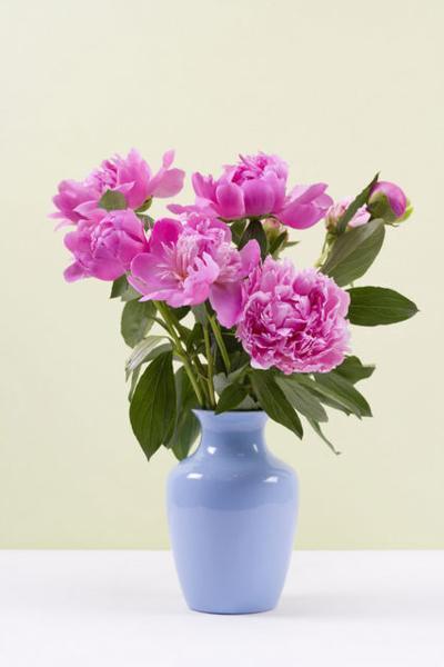 Obits floral 03