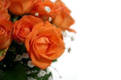 Obits floral 16
