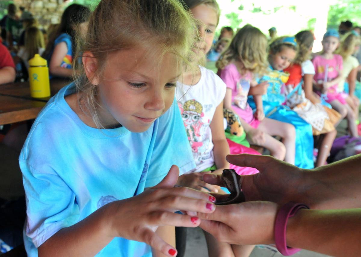 Girl Scout Camp 03.jpg