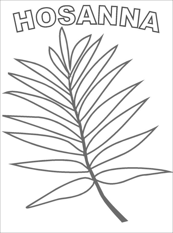 Palm branch to decorate coloring