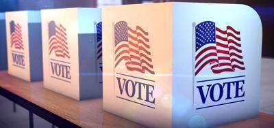 Kaufman CO early voting