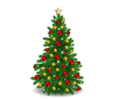 Christmas tree Used Nov 2019