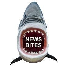 NewsBites
