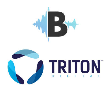 AudioBoomTriton375