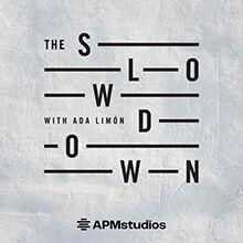 The Slowdown 220