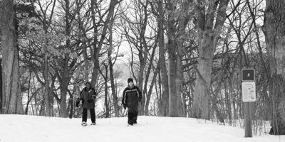 Embrace winter on a pair of snowshoes