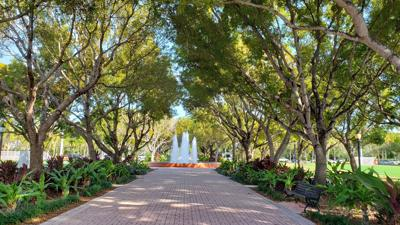 Potential solutions for the 'Fantasy Island' issues on Key Biscayne