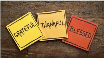 Start a new holiday tradition – a Thanksgiving Gratitude Tree