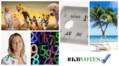 #kbvotes Numbers Rock.jpg