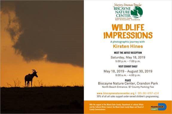 Wildlife Impressions by Kristen Hines