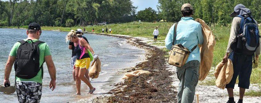 Virginia Key Historic Park anniversary morning clean up