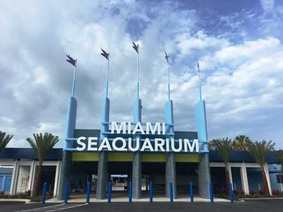 Seaquarium to close 10-days after reopening.