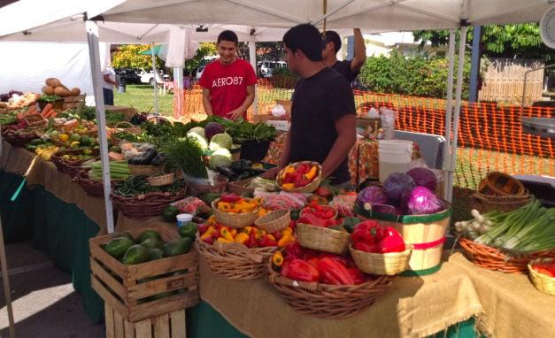 Key BIscayne Farmers Market
