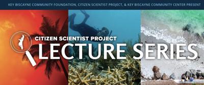 Sea turtles lecture kicks off virtual return of Citizen Scientist Project