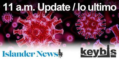 11 coronavirus update