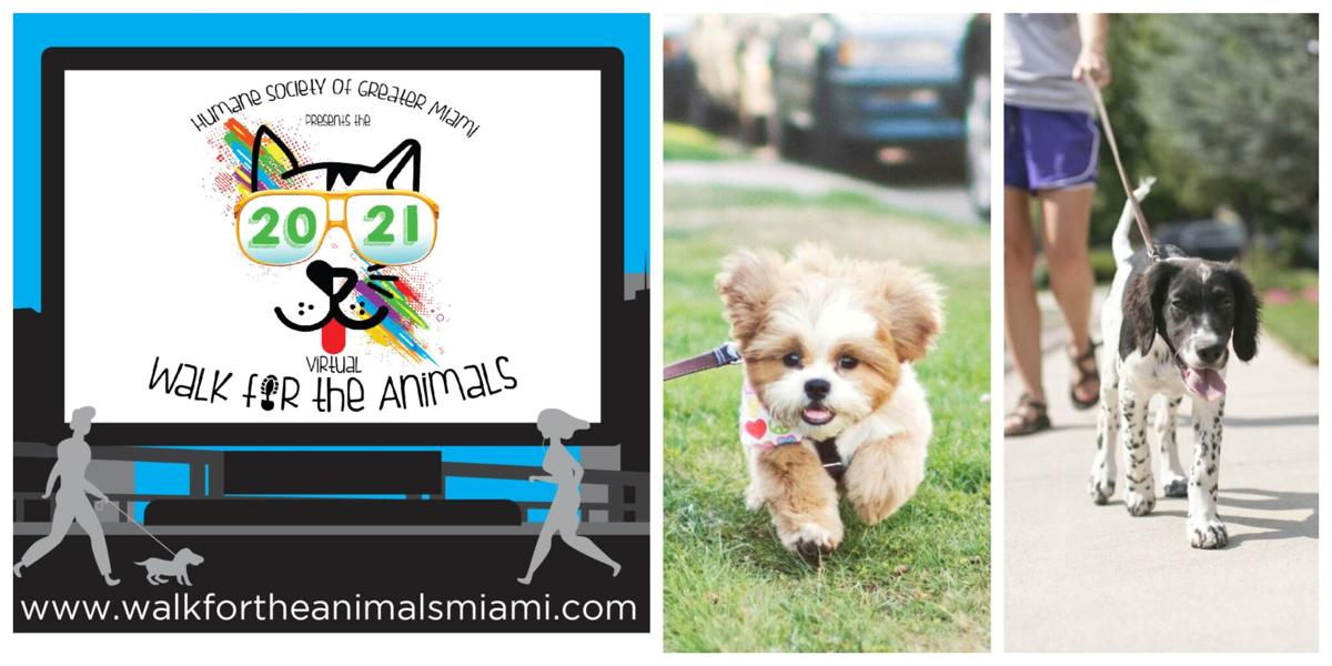 Humane Society prepping for a virtual Walk for Animals