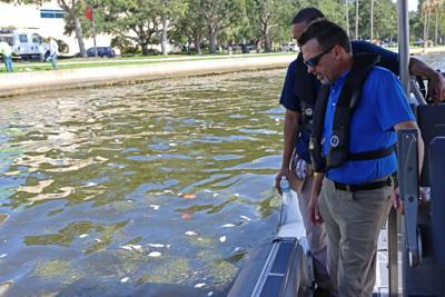 FWC-Director-Eric-Sutton-surveys-red-tide-bloom-in-Tampa-Bay-including-sea-grass-July-2021-e1628162017484.jpeg