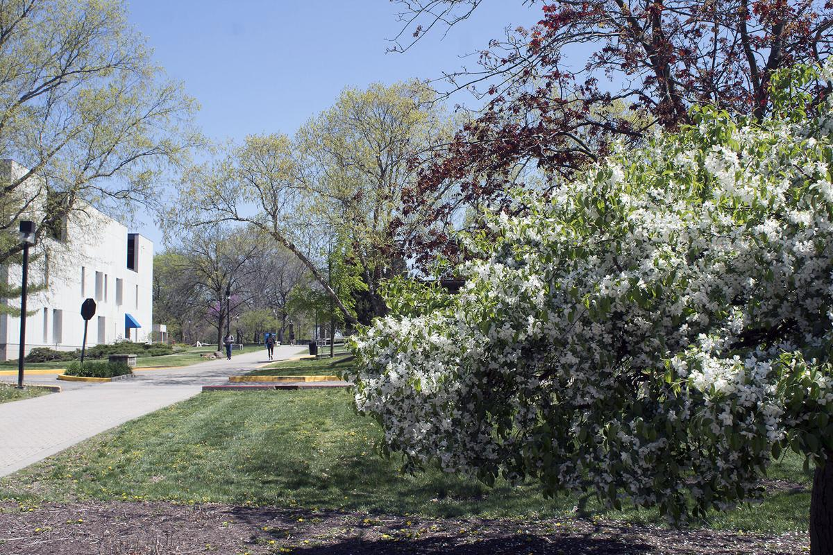 Spring around campus