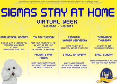Stay at Home Virtual