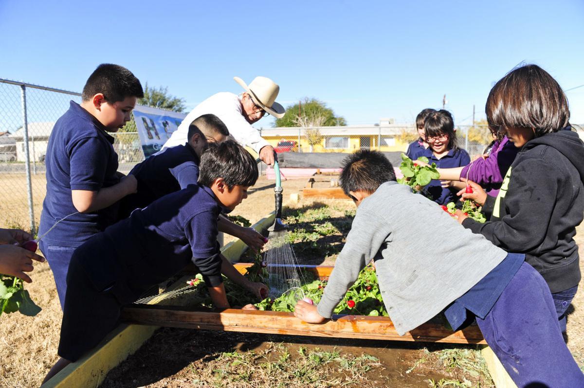 The bountiful benefits of school gardens
