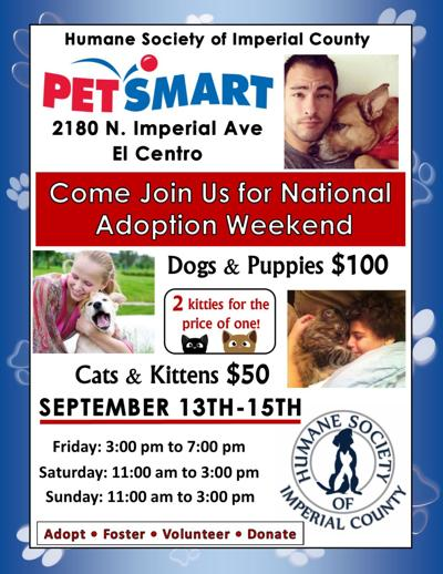 September National Adoption Weekend
