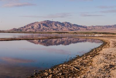 Kelley wants county to be more proactive about Salton Sea