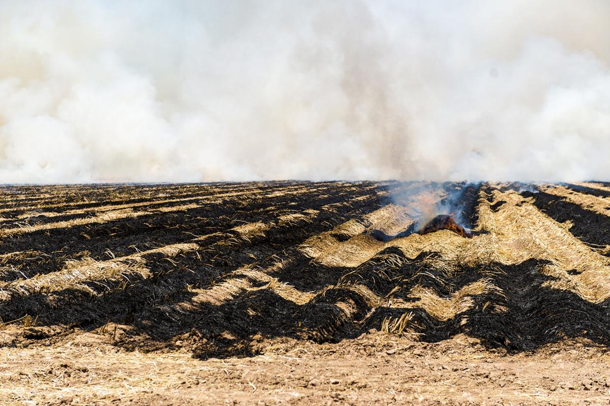Report of dangerous fire in Holtville turned out be just a field burn