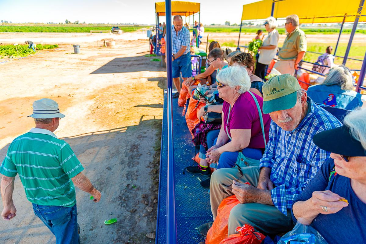 Farm tours showcase Valley's ag industry