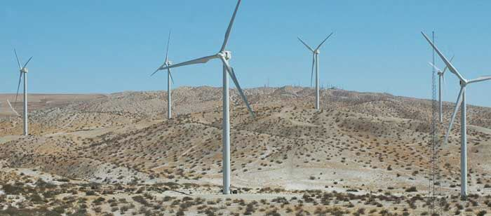 Wind energy both gives and takes away