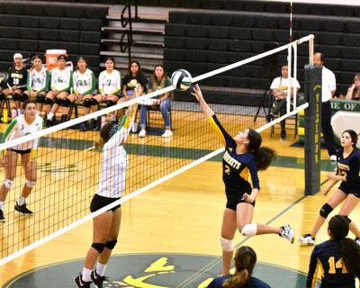 Holtville cruises past Hornets in straight sets