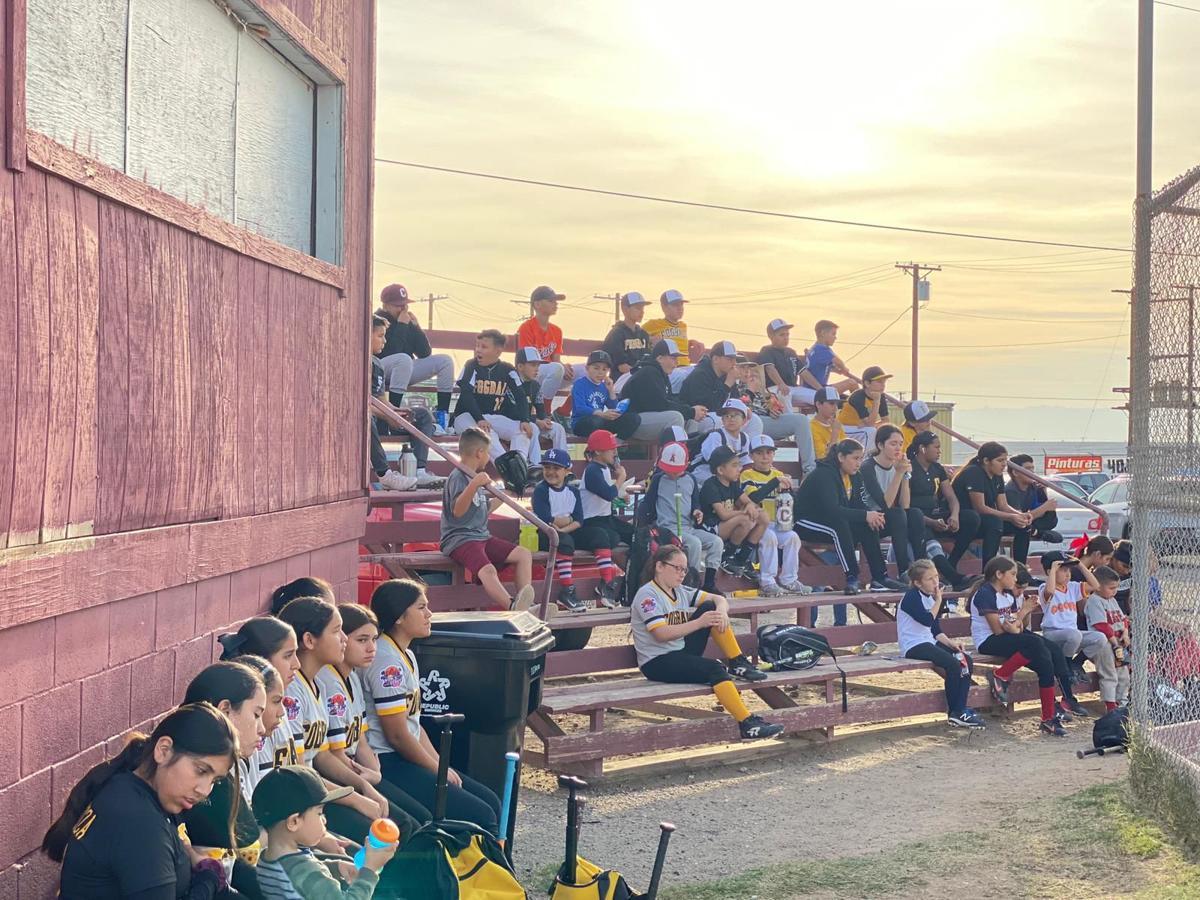 Calexico Booster Club Baseball & Softball Camp