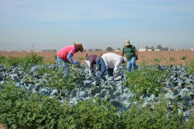 Locals embrace spirit of National Ag Day