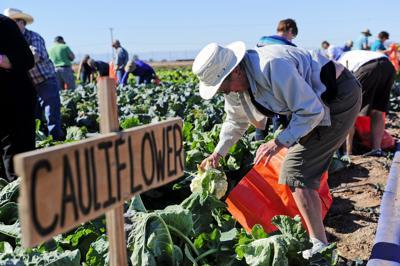 Farm Smart Winter Visitor Program begins